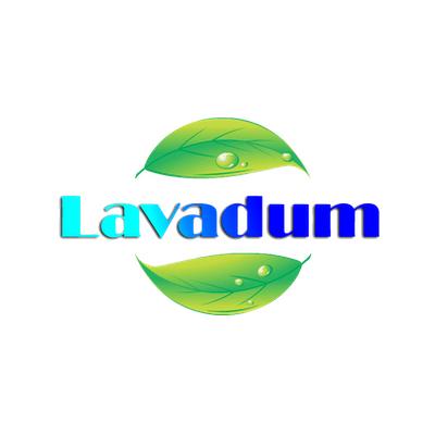 lavadum marketing digital